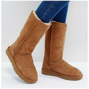 Ugg Boots Tall Chestnut Side Zip